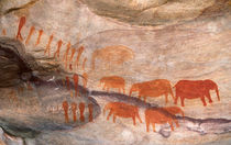 San, Bushman rock art, Cederberg Wilderness Area, Western Ca... by Danita Delimont