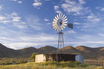 Windmill and dam in the Karoo at sunrise, Western Cape, South Africa. by Danita Delimont