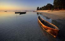 Wooden boats on Tondooni Beach, Pemba Island, Zanzibar, Tanzania von Danita Delimont