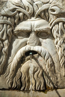 Roman fountain high relief, Carthage National Museum, Byrsa ... by Danita Delimont