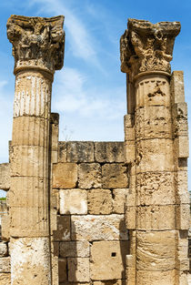 Columns of the House of the Decorated Capitals, Utica Punic ... von Danita Delimont