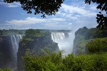 Victoria Falls or Mosi-oa-Tunya, Zimbabwe, Africa von Danita Delimont