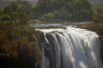Victoria Falls, Zimbabwe von Danita Delimont