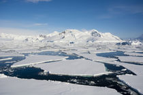 South of the Antarctic Circle. Near Adelaide Island. The Gul... von Danita Delimont