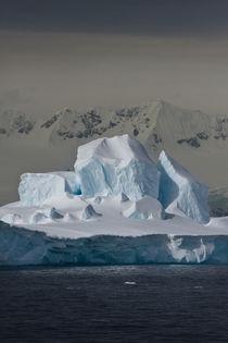 Southern Ocean, South Shetland Islands, Antarctica by Danita Delimont
