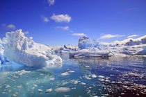 Icebergs and ice flows along the Antarctic Peninsula, near P... by Danita Delimont