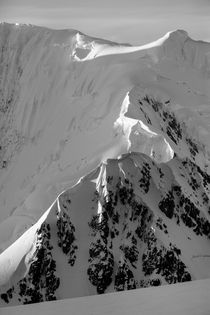 Mountain Peaks, Antarctica by Danita Delimont