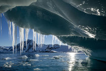 Iceberg, Petermann Island, Antarctica by Danita Delimont