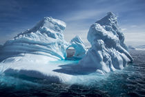 Iceberg, Antarctic Peninsula by Danita Delimont