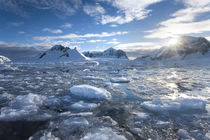 Mountain Peaks and Ice, Antarctic Peninsula von Danita Delimont