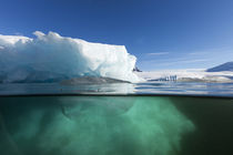 Underwater Iceberg, Enterprise Island, Antarctica by Danita Delimont
