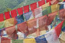 Asia, Bhutan, Thimphu by Danita Delimont