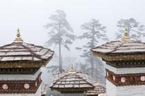 Asia, Bhutan, Dochu La von Danita Delimont
