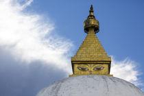 Asia, Bhutan, Punakha Valley von Danita Delimont