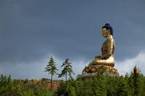 Asia, Bhutan by Danita Delimont