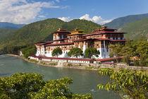 Punakha Dzong or monastery, Punakha, Bhutan von Danita Delimont