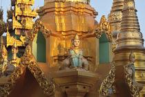 Myanmar, Burma, Yangon von Danita Delimont