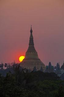 Myanmar, Yangon by Danita Delimont