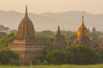 Bagan. Temples at sunset. von Danita Delimont