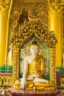 Yangon. Shwedagon Pagoda. Buddha in an ornate niche. by Danita Delimont