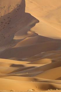 China, Inner Mongolia, Badain Jaran Desert by Danita Delimont