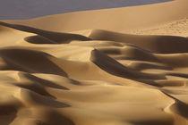 China, Inner Mongolia, Badain Jaran Desert von Danita Delimont