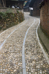 Cobbled street in the Miao village, Kaili, Guizhou, China by Danita Delimont