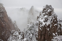 Snow, Huangshan or Yellow Mountains, Anhui Province, China von Danita Delimont