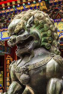 Dragon Bronze Statue Roof Summer Palace Beijing, China by Danita Delimont