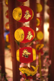 Chinese New Year Decorations by Danita Delimont