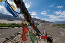 India, Jammu & Kashmir, Ladakh, strings of prayer flags at S... von Danita Delimont