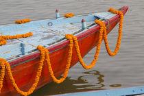 India, Uttar Pradesh, Varanasi by Danita Delimont