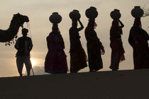 Asia, India, Rajasthan, Manvar, desert, sand dunes von Danita Delimont