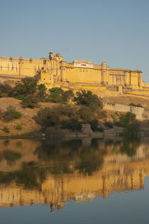 Amber Fort reflected in Maota Lake, Jaipur, Rajasthan, India. by Danita Delimont