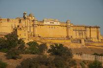Amber Fort, Jaipur, Rajasthan, India. von Danita Delimont