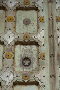 Detail of a wooden door, Mehrangarh Fort, Jodhpur, Rajasthan, India. by Danita Delimont