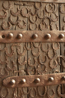Horseshoes decorate a wooden door, Jama Masjid, Fatehpur Sik... von Danita Delimont