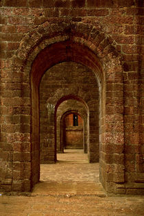 ARCHED PATHWAY AT BASILICA OF BOM JESUS, ST von Danita Delimont