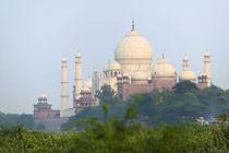 Taj Mahal, Agra, India by Danita Delimont