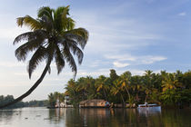 Houseboat, Backwaters, Alappuzha or Alleppey, Kerala, India by Danita Delimont