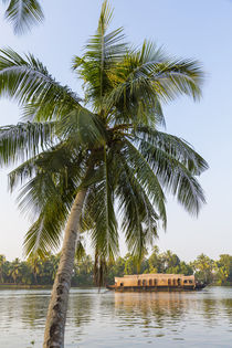 Traditional house boat, Kerala backwaters, nr Alleppey, (or Alap von Danita Delimont