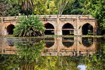 Athpula Stone Bridge Reflection Lodi Gardens New Delhi India by Danita Delimont