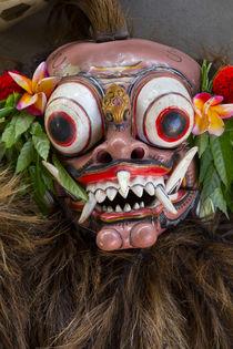 Indonesia, Bali by Danita Delimont