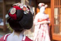 Geisha, Kyoto, Japan by Danita Delimont