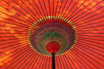 Traditional umbrella, Japan von Danita Delimont