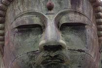 Buddha statue, Daibutsu, Kamakura, near Tokyo, Japan von Danita Delimont