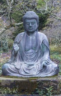 Japan, Kanagawa, Kamakura, Tokeiji Temple Buddha . von Danita Delimont
