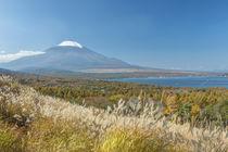 Lake Yamanaka & Mt von Danita Delimont