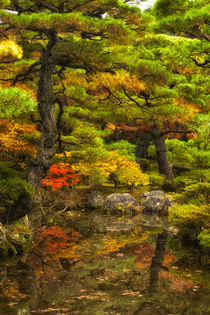 Kyoto, Japan, Fall colors and reflection in water by Danita Delimont