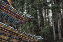 Decorative Japanese Temple roof against background of trees by Danita Delimont